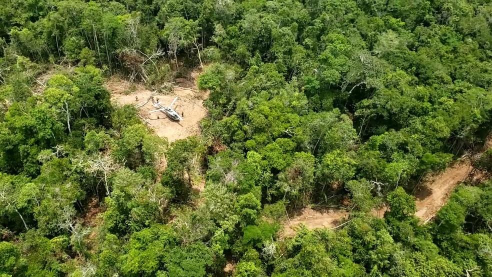 Operação que mirou em garimpo ilegal em terra indígena de Rondônia ocorreu nesta semana.  — Foto: PF/Divulgação