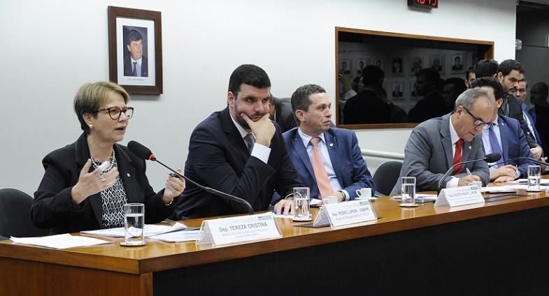 Tereza Cristina (Foto: Cleia Viana/Câmara dos Deputados)