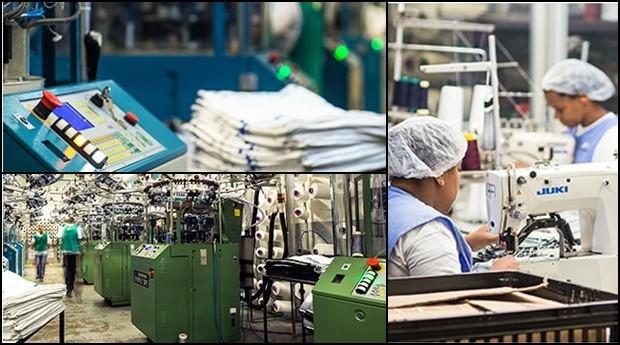 Torp: fábrica se modernizou (Foto: Divulgação )