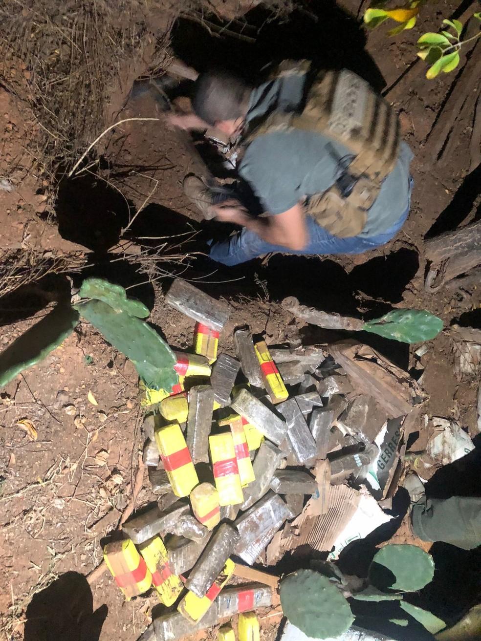 Ao chegar à granja, foi encontrado cerca de 200 kg de maconha enterrados.  — Foto: Divulgação/Polícia Civil