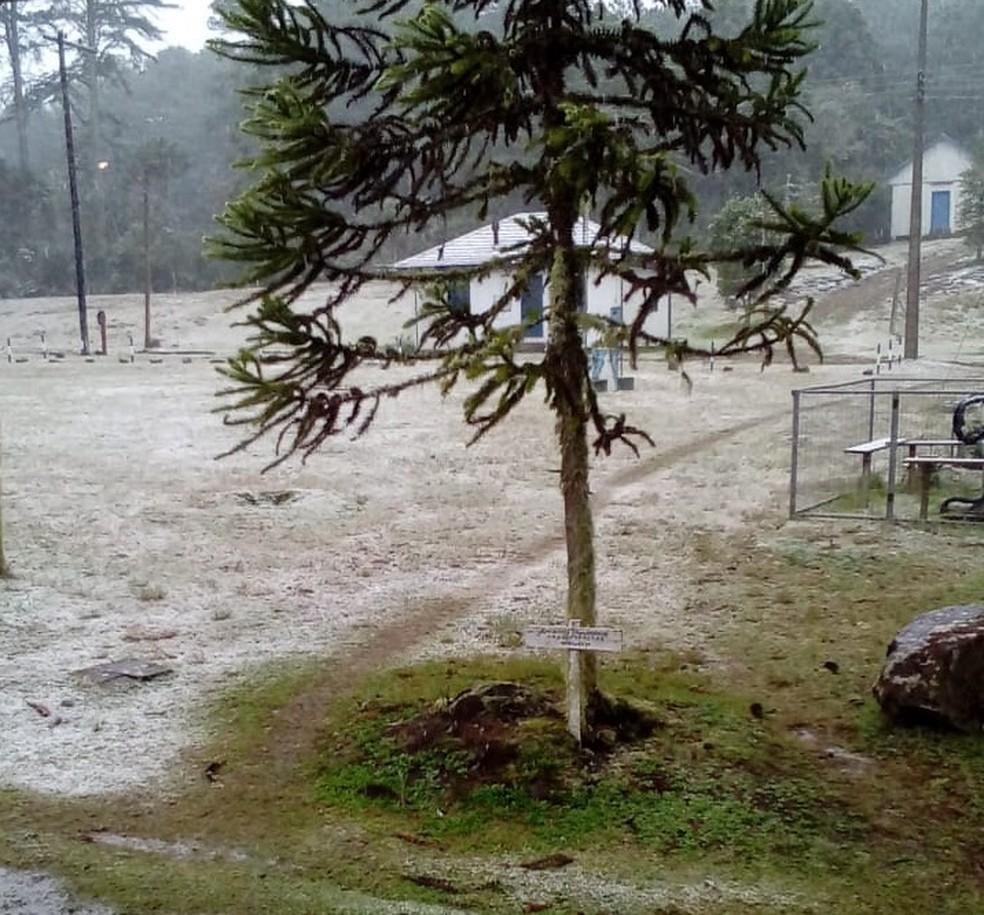 Parque Nacional de São Francisco de Paula teve registro de neve nesta quinta (20) — Foto: José Luís Soares/Arquivo Pessoal