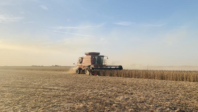 Fim da safra de soja e milho nos EUA (Foto: Joana Colussi/Globo Rural)