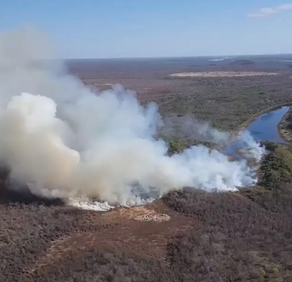 Chamas atingem área de lagoas dentro do Parque (Foto: Previncêndio/Divulgação)