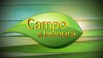 Campo e Lavoura