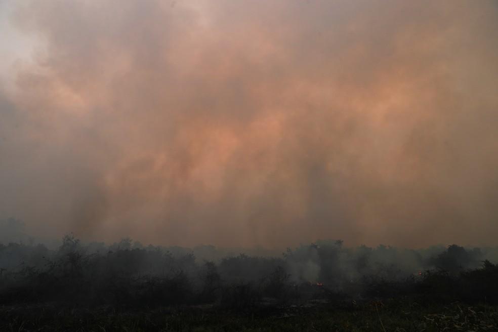 Fumaça sobe de incêndio no Pantanal em Poconé, em Mato Grosso, no dia 27 de agosto — Foto: Amanda Perobelli/Reuters
