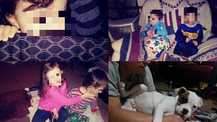 Paige compartilhou uma montagem dos filhos e do cachorro da família (Foto: Reprodução Facebook)