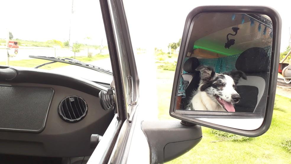 Nina vista do retrovisor da 'Florisbela Celeste', em Porto Velho.  — Foto: Pedro Bentes/G1