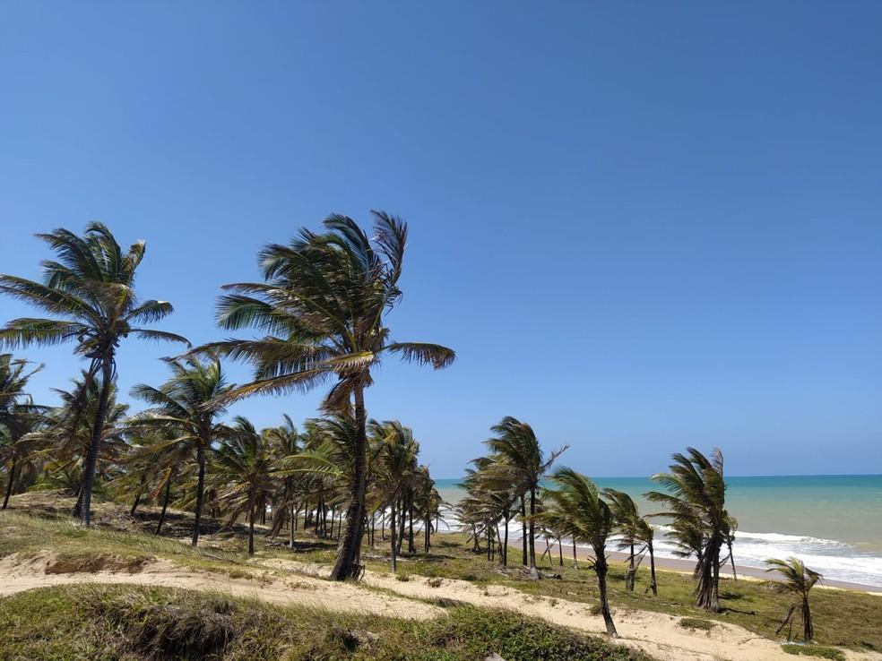 Belezas naturais são principal atrativo de Baía Formosa, no litoral Sul potiguar — Foto: Fernanda Zauli/G1