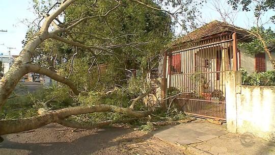 Santa Maria tem transtornos e falta de luz devido a ventos de quase 80 km por hora