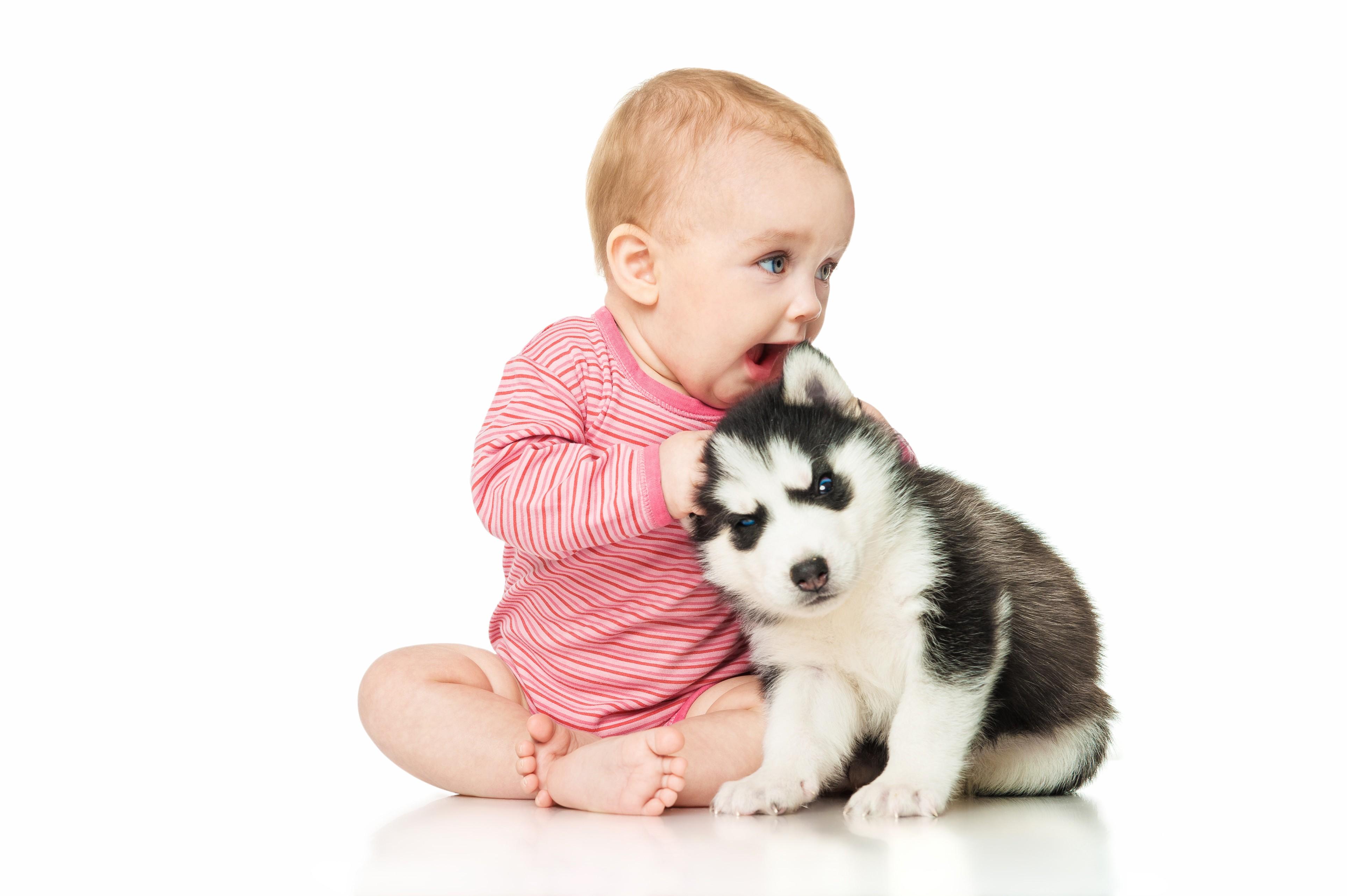 cães e bebês (Foto: ThinkStock)