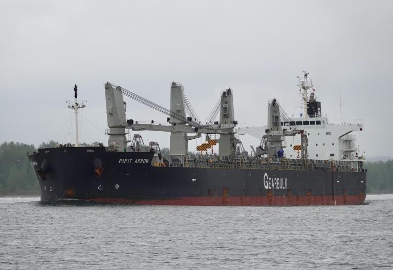 Navio é colocado em quarentena após tripulante testar para a Covid-19 em São Luís; Anvisa monitora caso
