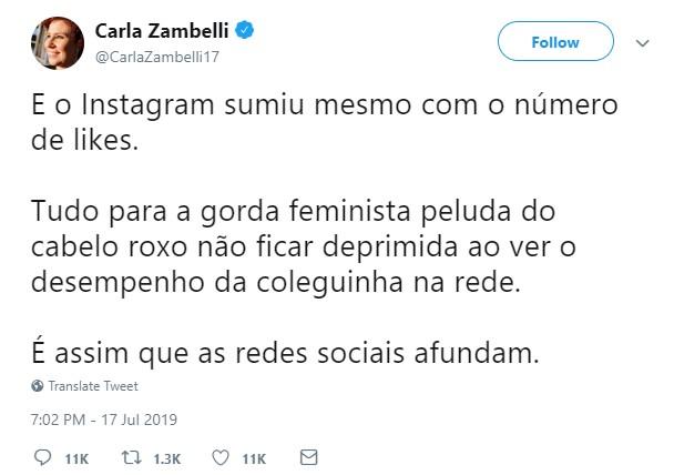 Deputada Diz Que Instagram Ocultou Curtidas Para Gorda