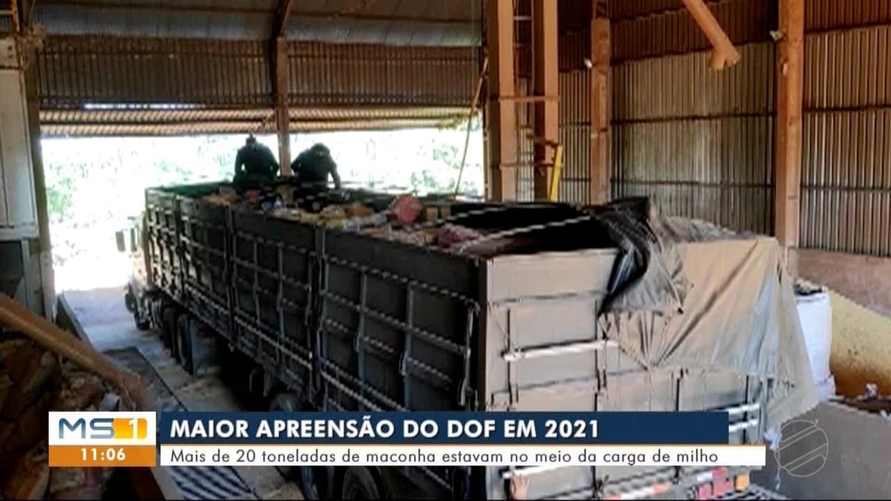 Carga com mais de 20 toneladas de maconha é apreendida em MS
