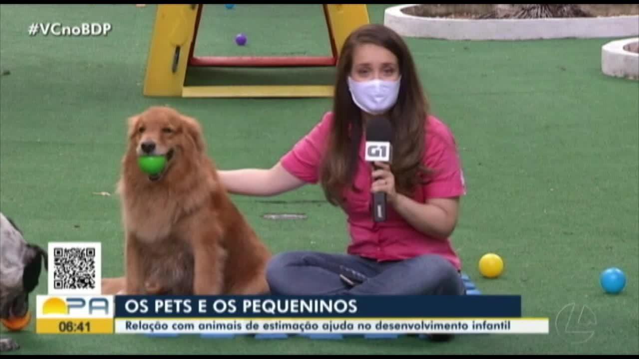 Alergista fala sobre convivência entre pequeninos e pets
