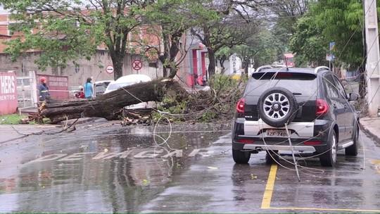 Chuva forte causa estragos em Maringá (PR)