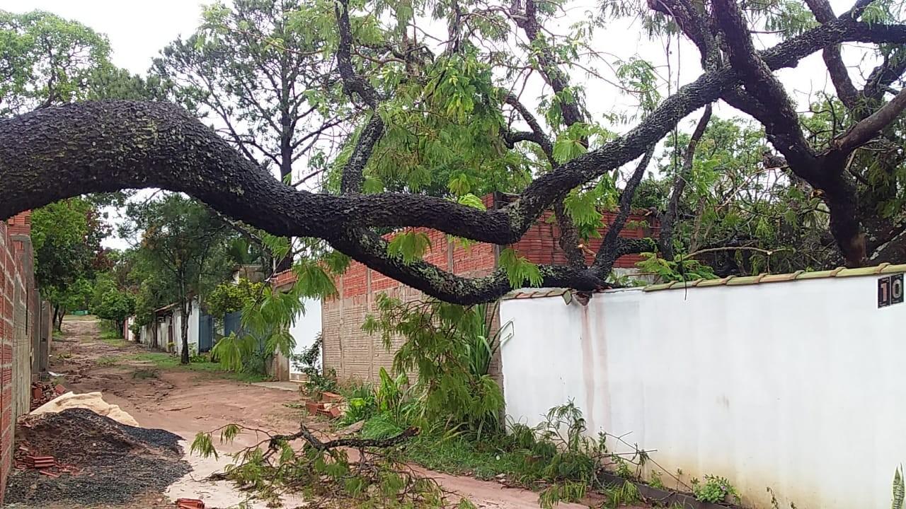 FOTOS: Chuva  e ventos fortes causam estragos na represa do Broa em Itirapina