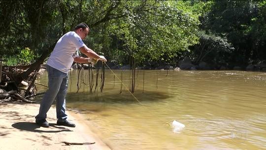 Após despoluição, Rio Jundiaí volta a ter peixes e abastece moradores
