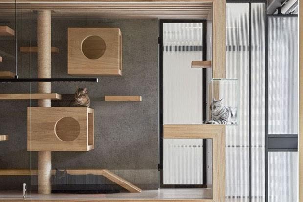 Uma casa para gatos com design integrado ao ambiente (Foto: Hey!Cheese Photography/ Divulgação)