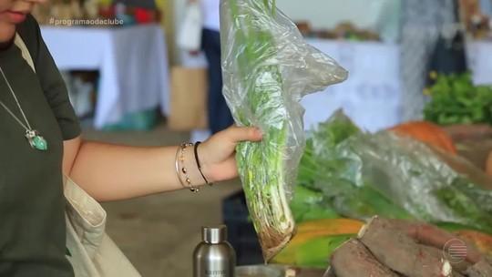 Feria agroecológica promove troca cultural e alimentação saudável