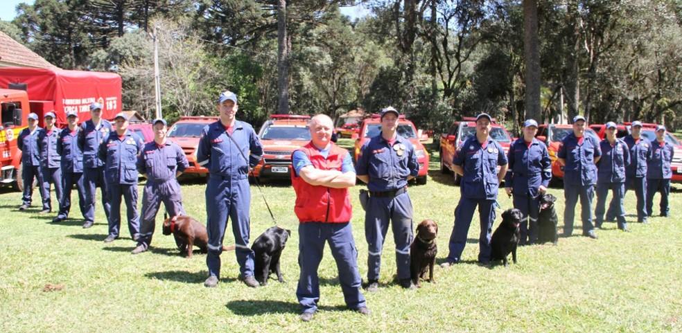 Prática de treinar animais para integrar a corporação ocorre desde 2003 em Santa Catarina — Foto: Corpo de Bombeiros Militar de Santa Catarina