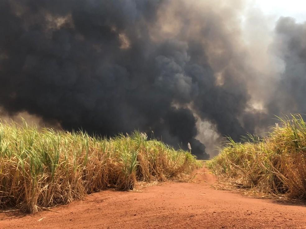 Incêndio de grande proporção entre o Trevo de Xapetuba e Monte Alegre de Minas — Foto: Corpo de Bombeiros