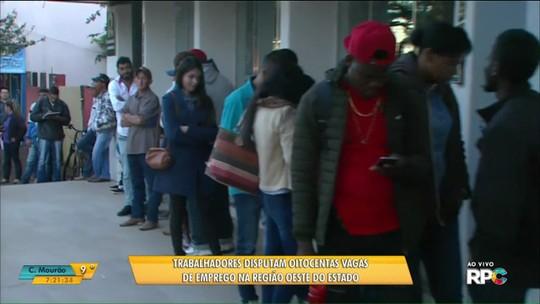 Centenas fazem fila para tentar vaga de emprego em cooperativa de Ubiratã; há 800 vagas