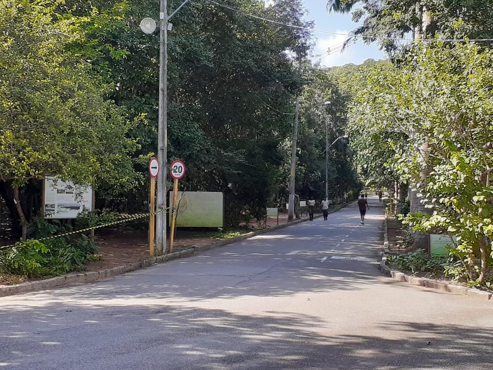 Parque das Dunas, em Natal, estará aberto durante o carnaval — Foto: Kléber Teixeira / Intertv Cabugi