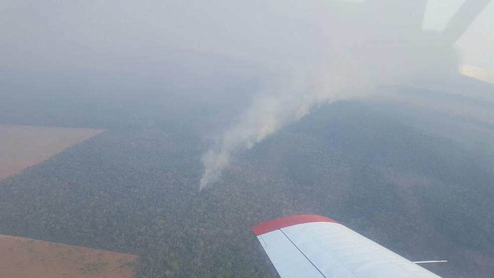 Bombeiros tentam extinguir incêndio que atingiu Parque Serra de Ricardo Franco (MT)  (Foto: Corpo de Bombeiros de MT)