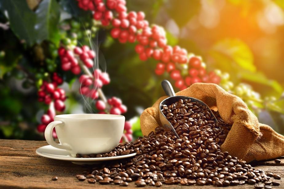 Você sabe qual a origem do cafezinho que toma todo dia?