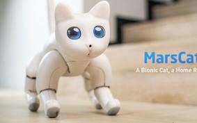 Como este robô-gato quer se tornar seu novo bichinho de estimação