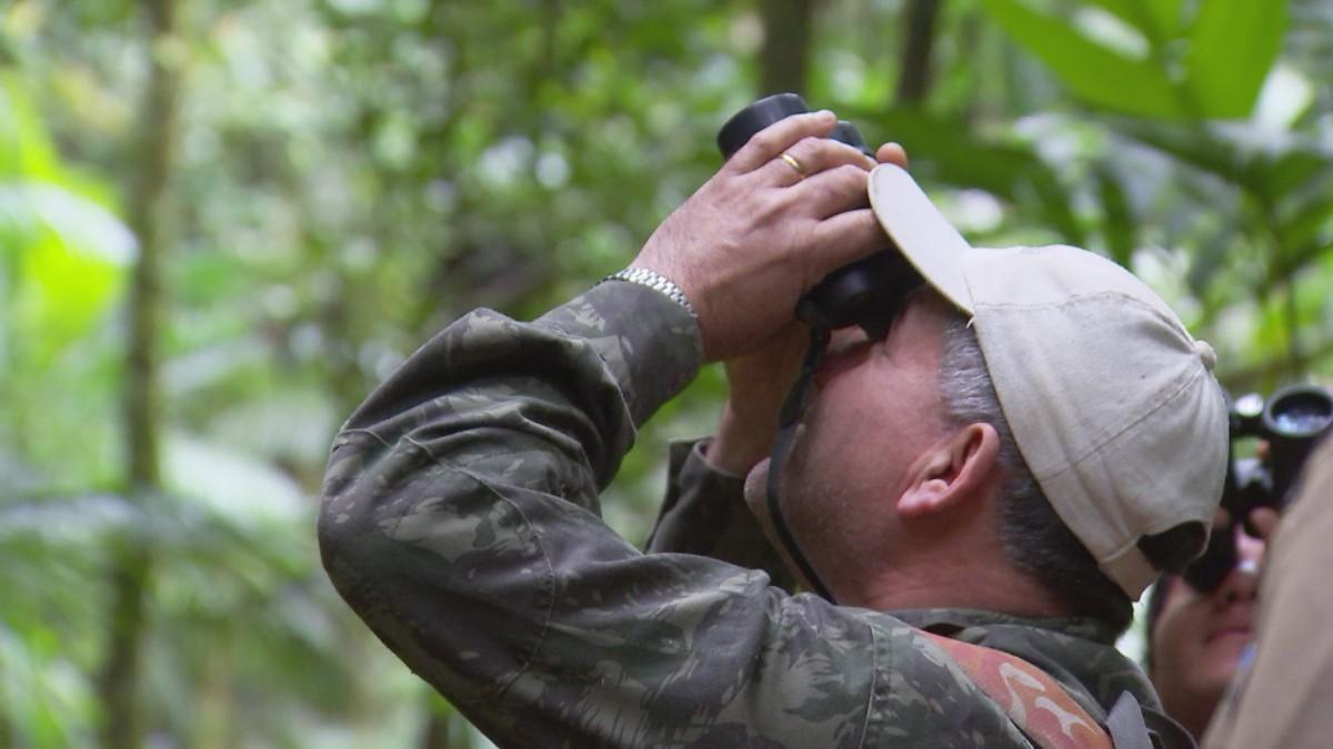 Maior macaco das Américas pode ser encontrado na região de Itapetininga e corre risco de extinção
