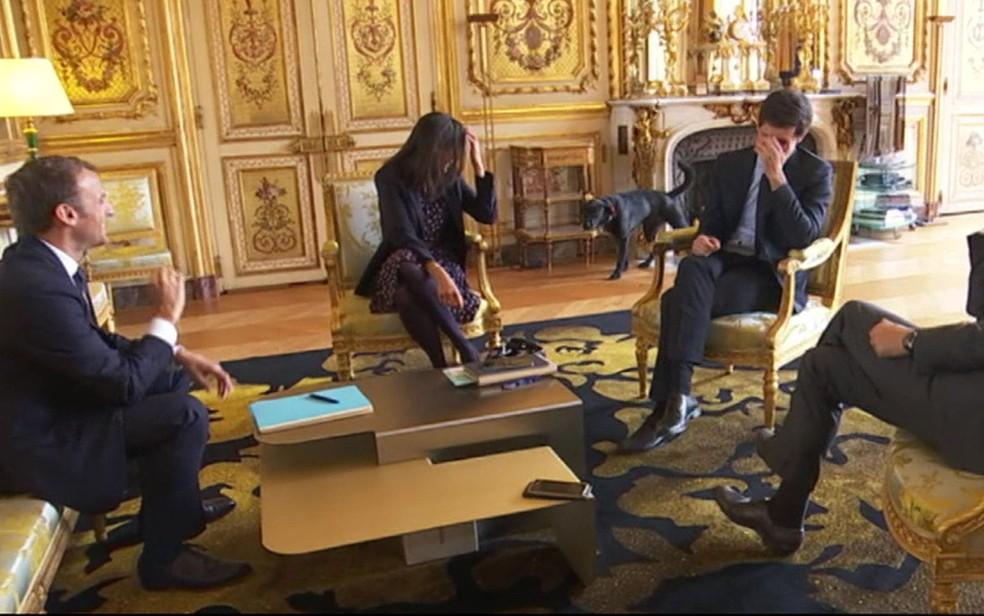 Vídeo: cachorro de Macron faz xixi em lareira durante reunião ministerial