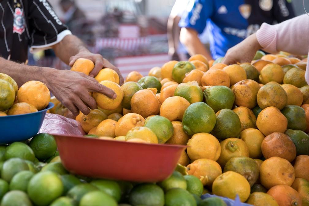 Com o aumento da safra, preços das frutas tiveram forte queda. (Foto: Marcelo Brandt/G1)
