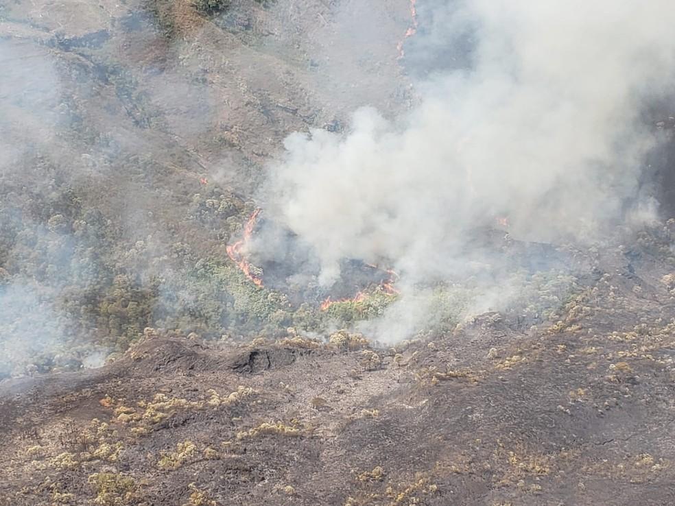 Parte da área da reserva Uaimii consumida pelo fogo  — Foto: Lucas Franco / TV Globo