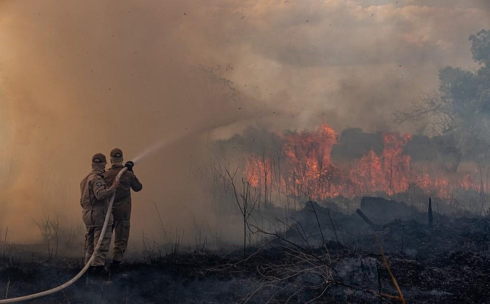 Período proibitivo é estendido até 30 de novembro — Foto: Departamento de Comunicação do Governo de Mato Grosso/AFP