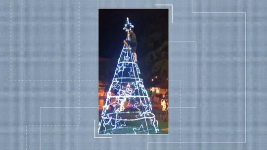 Vídeo flagra jovem derrubando árvore de Natal em praça no ES