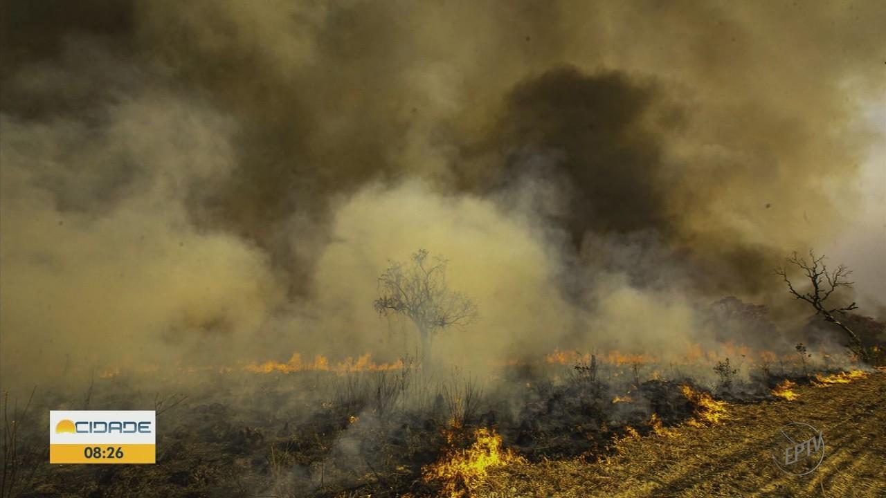 Terra da Gente mostra os estragos causados pelas queimadas no Pantanal