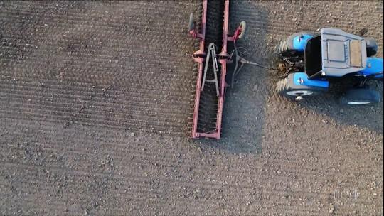 Às vésperas do plantio da safra, produtores de MT calculam prejuízos com as queimadas
