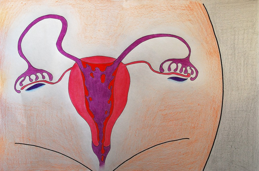 Menstruação (Foto: Flickr/ areta ekarafi/ Creative Commons)