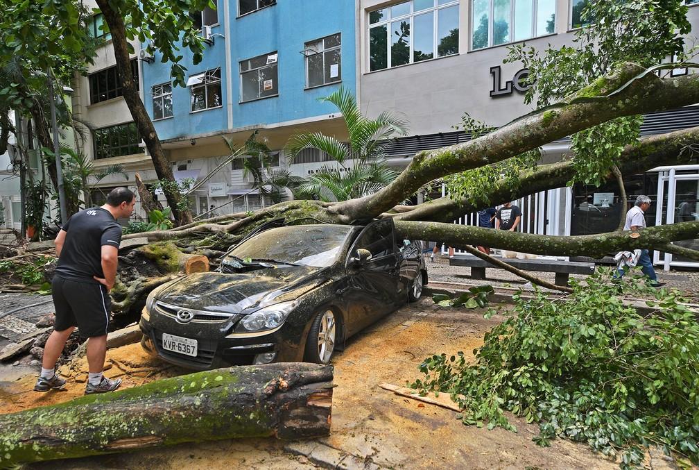 Homem observa seu carro esmagado pela queda de uma árvore devido a temporal no Rio de Janeiro — Foto: Carl de Souza/CDS/AFP