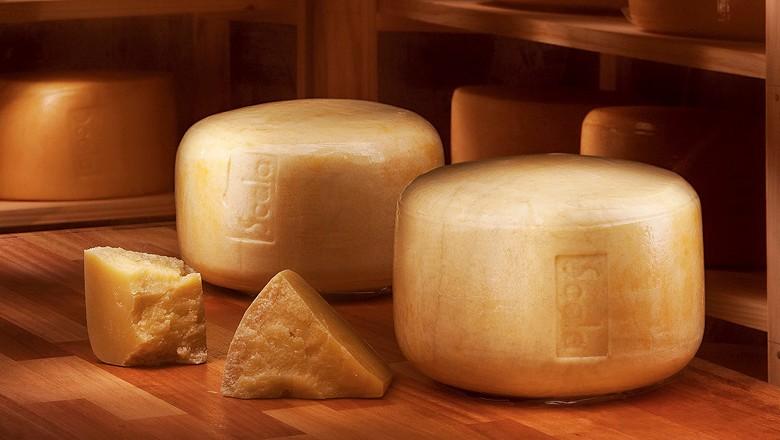 Laticinio Scala aposta no queijo parmesão  (Foto: Divulgação)