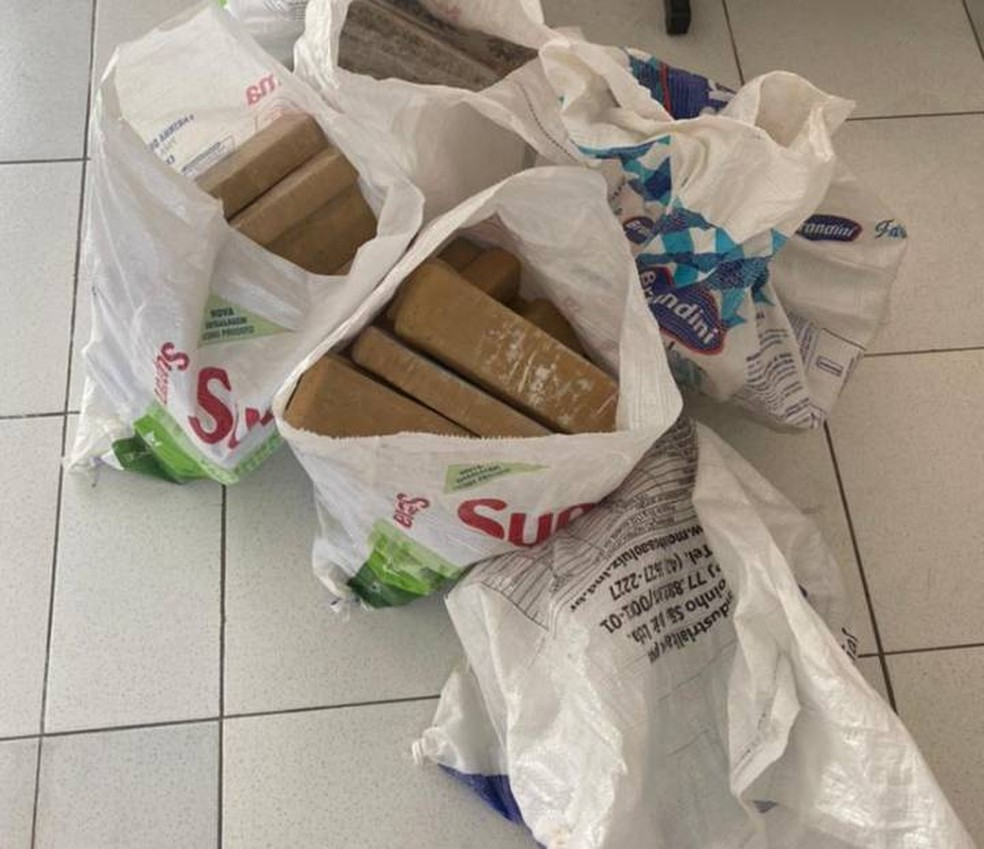 Cerca de 140 kg de maconha são apreendidos pela polícia na região metropolitana de Salvador — Foto: Divulgação/SSP-BA