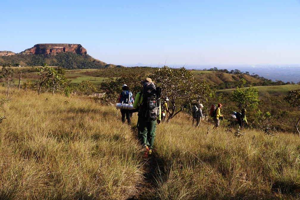 Participantes percorriam área onde não havia trilhas e nem estradas — Foto: TV Globo