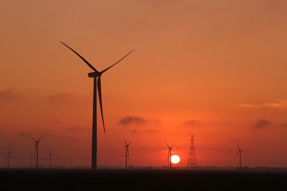 Copel inaugura nesta quarta-feira (26) um novo parque eólico no Rio Grande do Norte — Foto: Divulgação