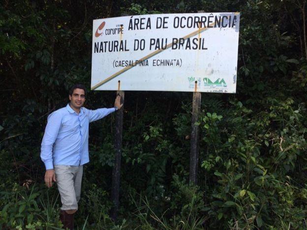 Ricardo Cardim visitou seis Estados para a produção do livro; na Bahia, encontrou alguns dos poucos trechos remanescentes com exemplares centenários de pau-brasil (Foto: Ricardo Cardim, via BBC)