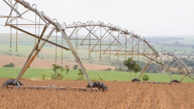 Brasil está entre os países com maior consumo de agrotóxicos em valores absolutos (Foto: Agência Brasil / BBC News Brasil)