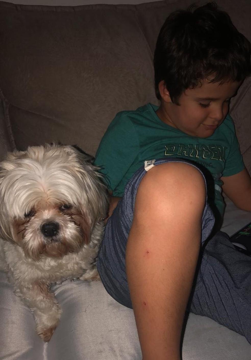 Mãe relata que cachorro é muito importante para filho, que tem autismo nível 3. Foto mostra cão e menino após reencontro.  — Foto: Arquivo pessoal