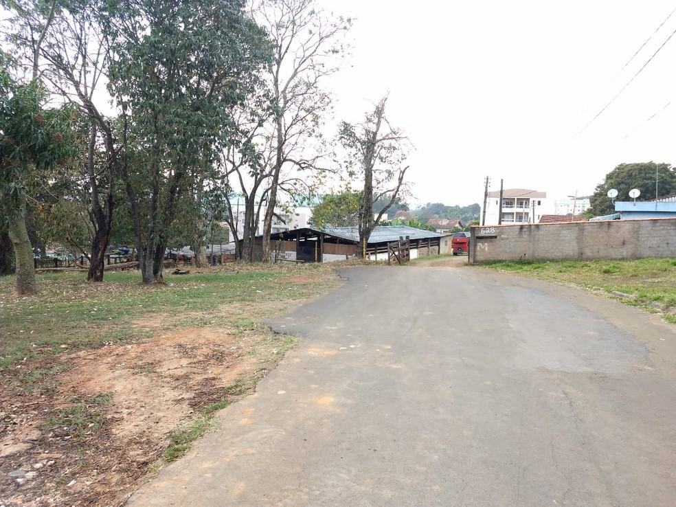 Haras escondia veículos que sofreram adulteração em Jaguariúna; quadrilha foi desarticulada pela Polícia Civil. — Foto: Roberto Torrecilhas