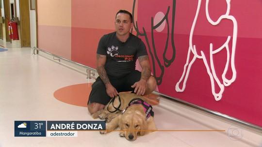Cadela Hope ajuda no tratamento de pacientes de câncer no INCA, Rio