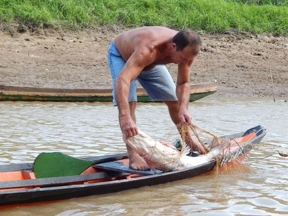 -  Pesca na região do Tapará, em Santarém  Foto: Fábio Sarmento/Arquivo pessoal